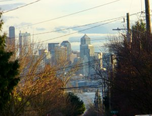 Seattle looks like the best place in America to ride out climate change.  See following story.